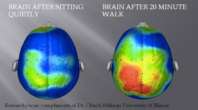 brainsitting.jpg